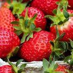 Fresas Lavadas Y Preparadas Para Consumir